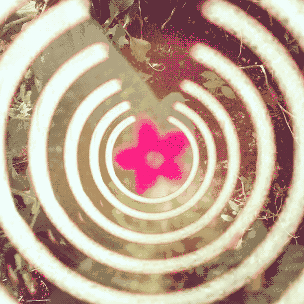 hear-flowers